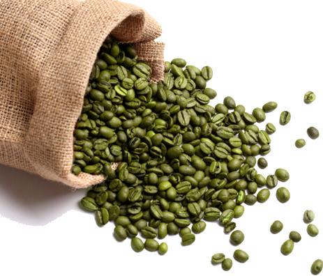 Zielona kawa a właściwości odchudzające